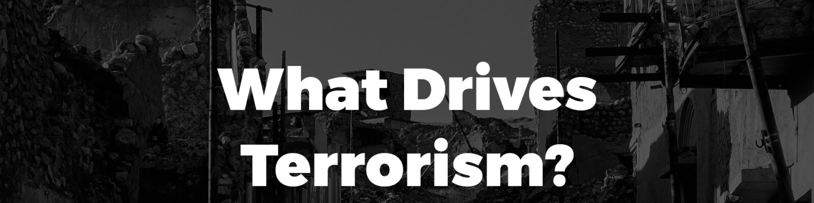 What Drives Terrorism